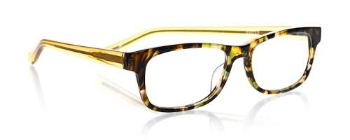Bob Frapples Tortoise Front wit Gold Frames